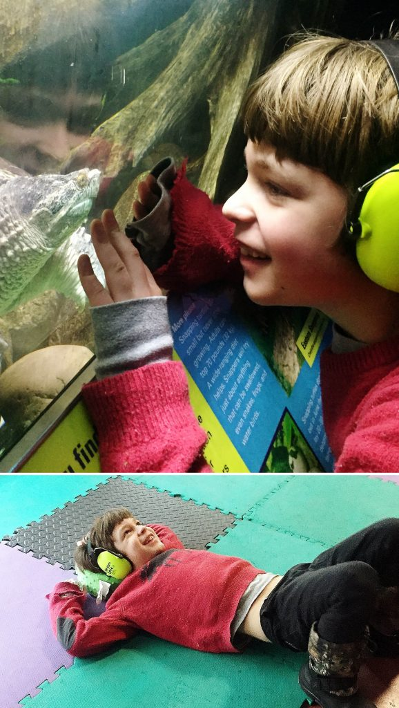 Child with headphones having fun looking and interacting with ECHO's snapping turtle. Bottom photo show same child in red top laying down on mats to calm himself.