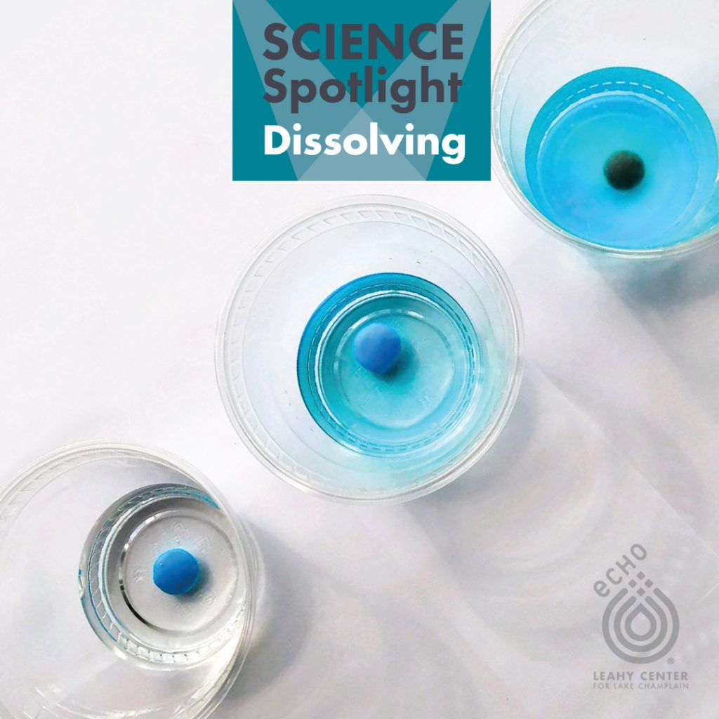 Dissolving blue candies in 3 cups