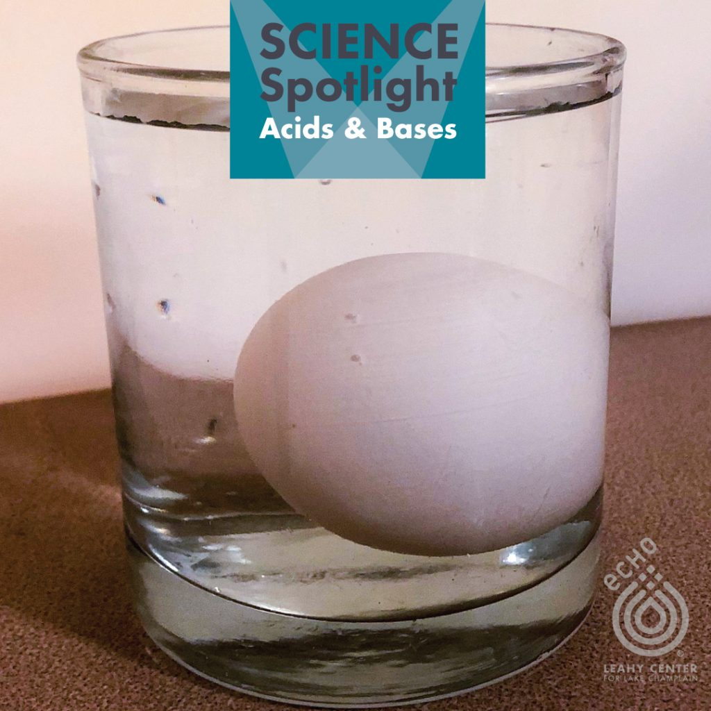 Glass of vinegar with an egg