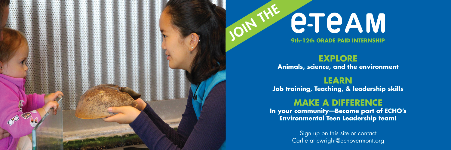 ETEAM accepting applications to the paid internship program at ECHO.