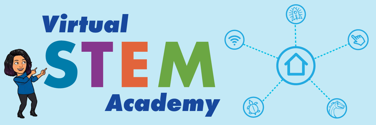 Virtual STEM Academy