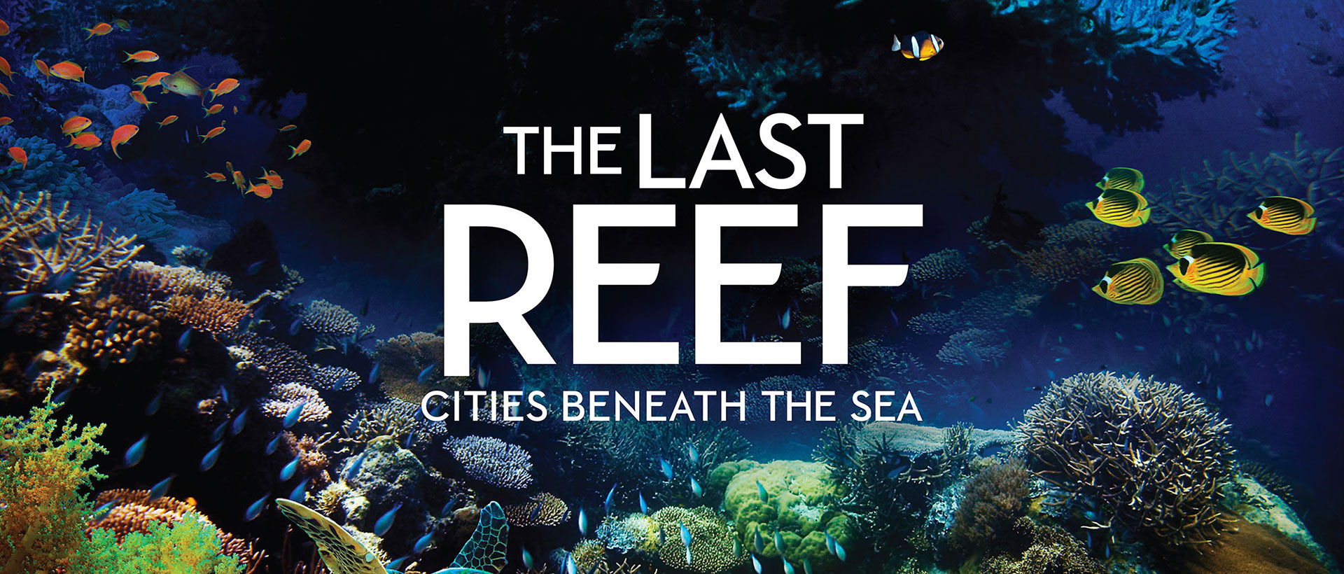The Last Reef title on top of a photo of tropical reef under water with fish