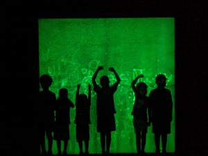 Black silhouettes of kids in front of a glowing green wall in the ECHO Shadow Box exhibit