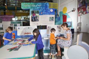 Family with older female adult and three younger kids are at tables in the Human Plus exhibit and are caring for a pet.
