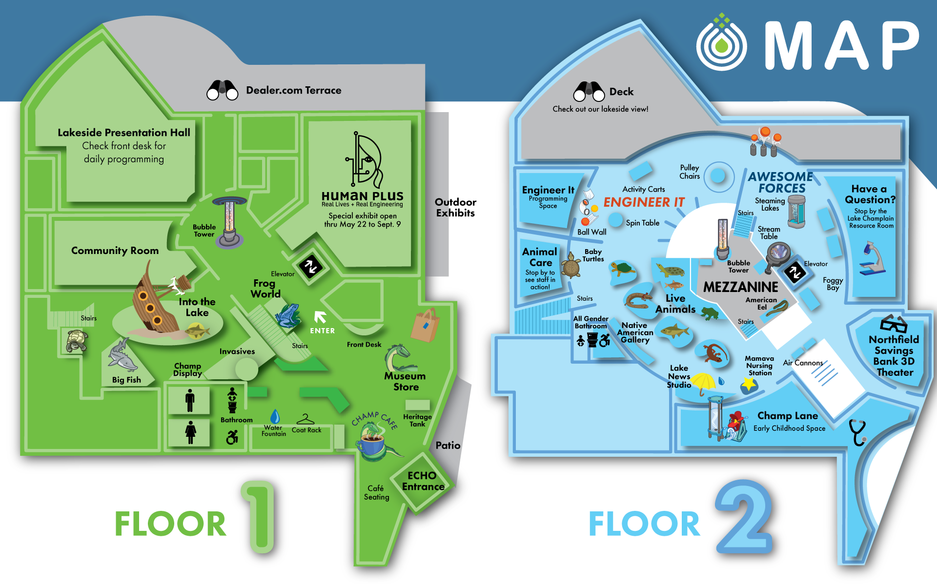 Map of Floor 1 are Floor 2 of ECHO. Downstairs: bathrooms, special exhibit, frog exhibit, museum store, Into the Lake exhibit. Upstairs: Awesome Forces, bathroom, nursing station, Engineer It, Animal exhibits, Champ Lane Early Learning, Resource Room, Outdoor deck. Mezzanine: eel exhibit.